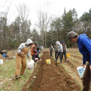 2nd Annual Harvest Hang: Potato Diggin' Party