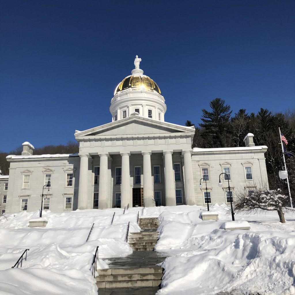 Despite The Threat Of Snowstorms, Twin Valley 8th Graders Made It To Montpelier To Learn About Careers In Government.